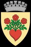 Sursa foto: ro.wikipedia.org