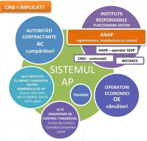Infographic-sistem institutional achizitii publice